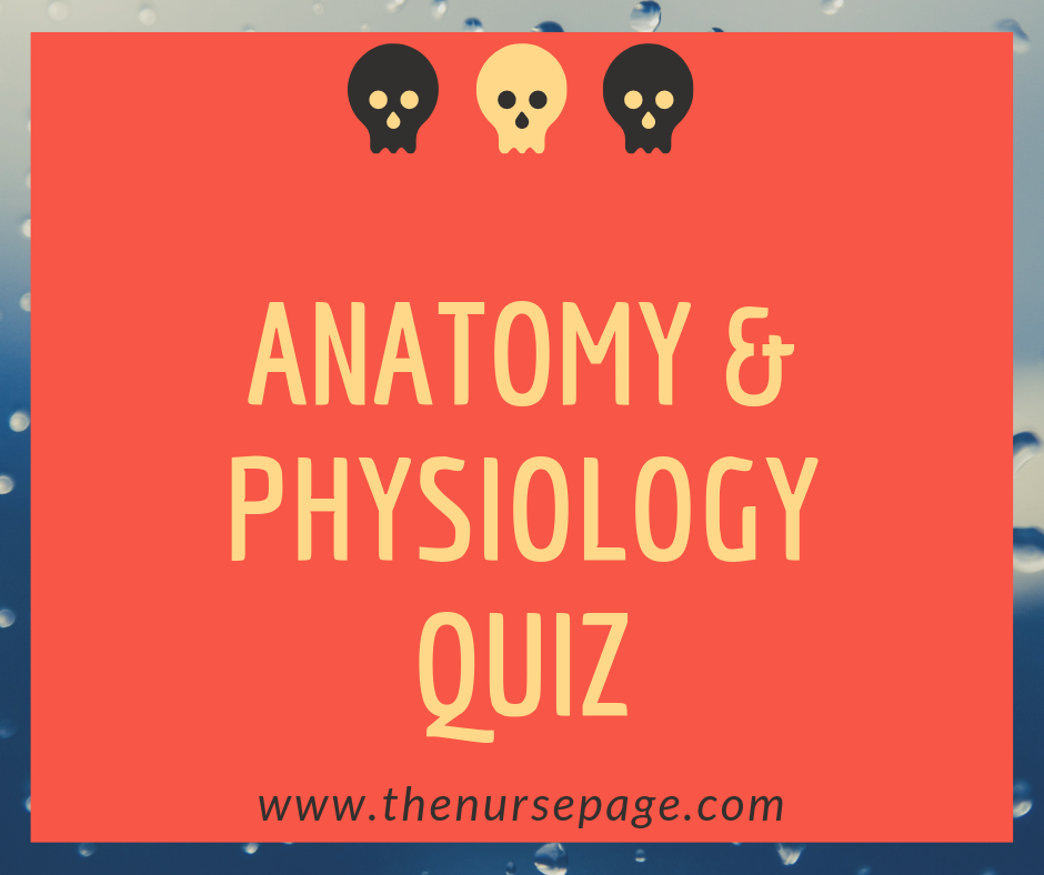 Anatomy and Physiology Nursing Quiz Questions - The Nurse Page